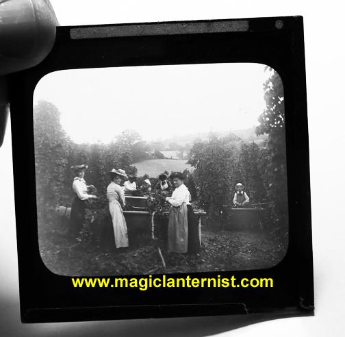 magiclanternist.com 268
