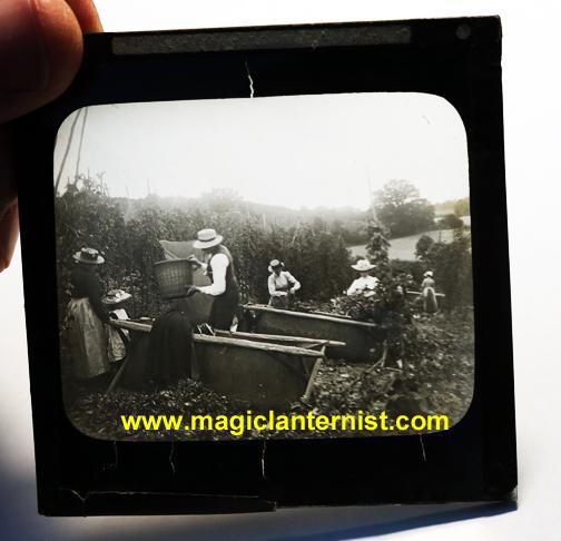 magiclanternist.com 269